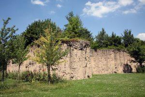 parc et jardin de Matisse a Lille pour rencontre naturiste et exhib